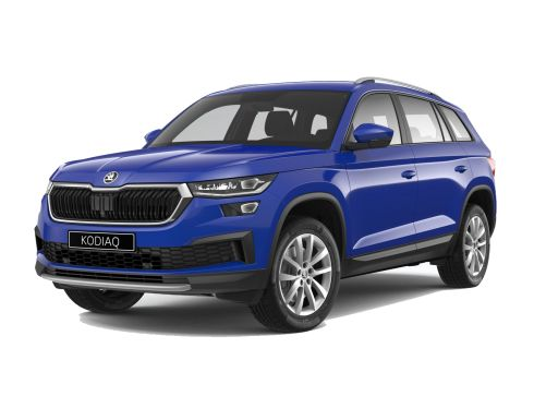 Skoda Kodiaq 1.5 TSI ACT 110kW Business Edition - EXTRA COMPLEET!